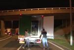 Inmigrantes se esconden en camión con un oso polar