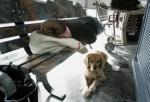 Escuadrón Canino Se Asegura De Aliviar El Estrés De Viajeros En Aerolínea