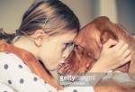 Perro mejor amigo del hombre